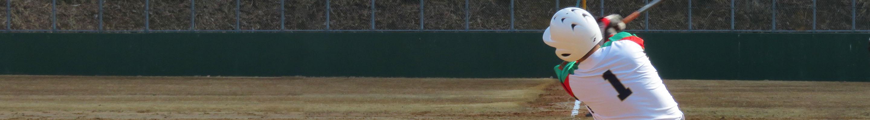 和平フレイズ野球クラブ 試合結果