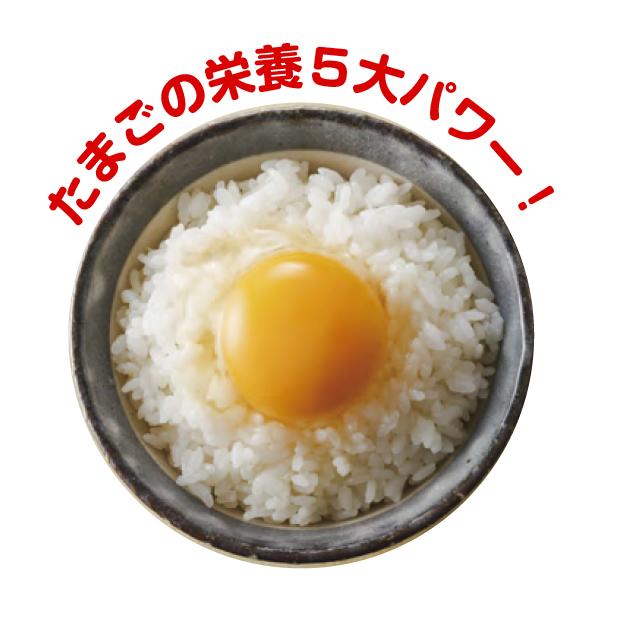 たまごの栄養5大パワー!